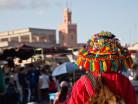 marrocosx