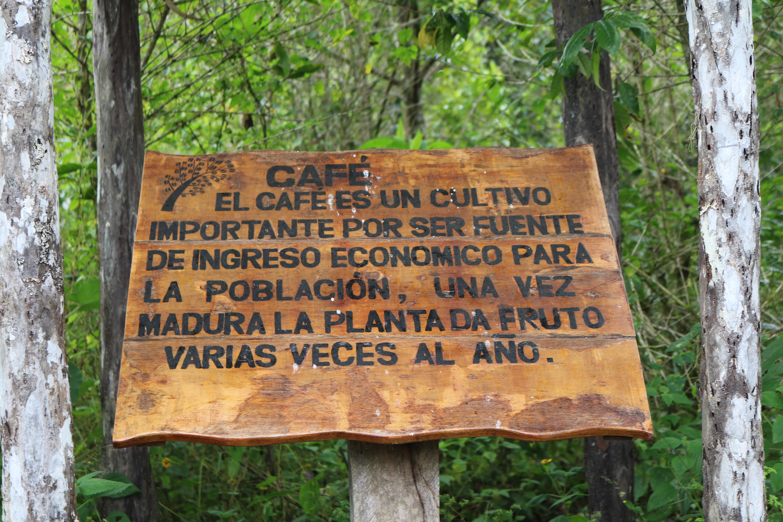 Trilha para a Cachoeira Gocta