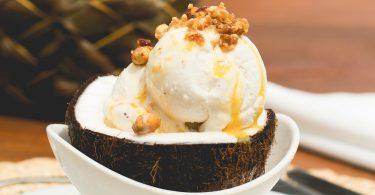 sorvete-de-coco-txai