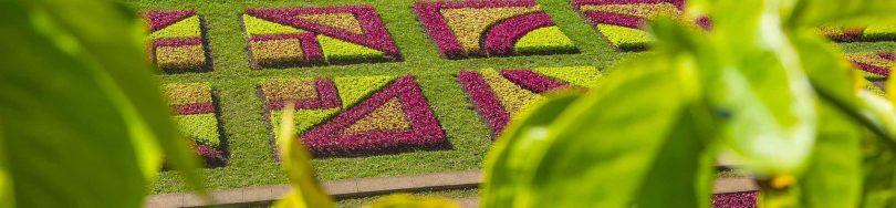 Jardim Botanico_Natureza_BR031©Andre Carvalho (1)