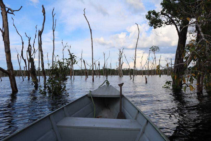 Passeio de barco pelos Igapós